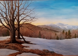 Black Mountain Meadows/Chris Muzerail