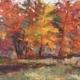 Symphony Of Color - $1025