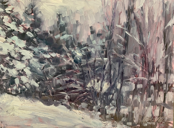 After the Storm/Melanie Levitt