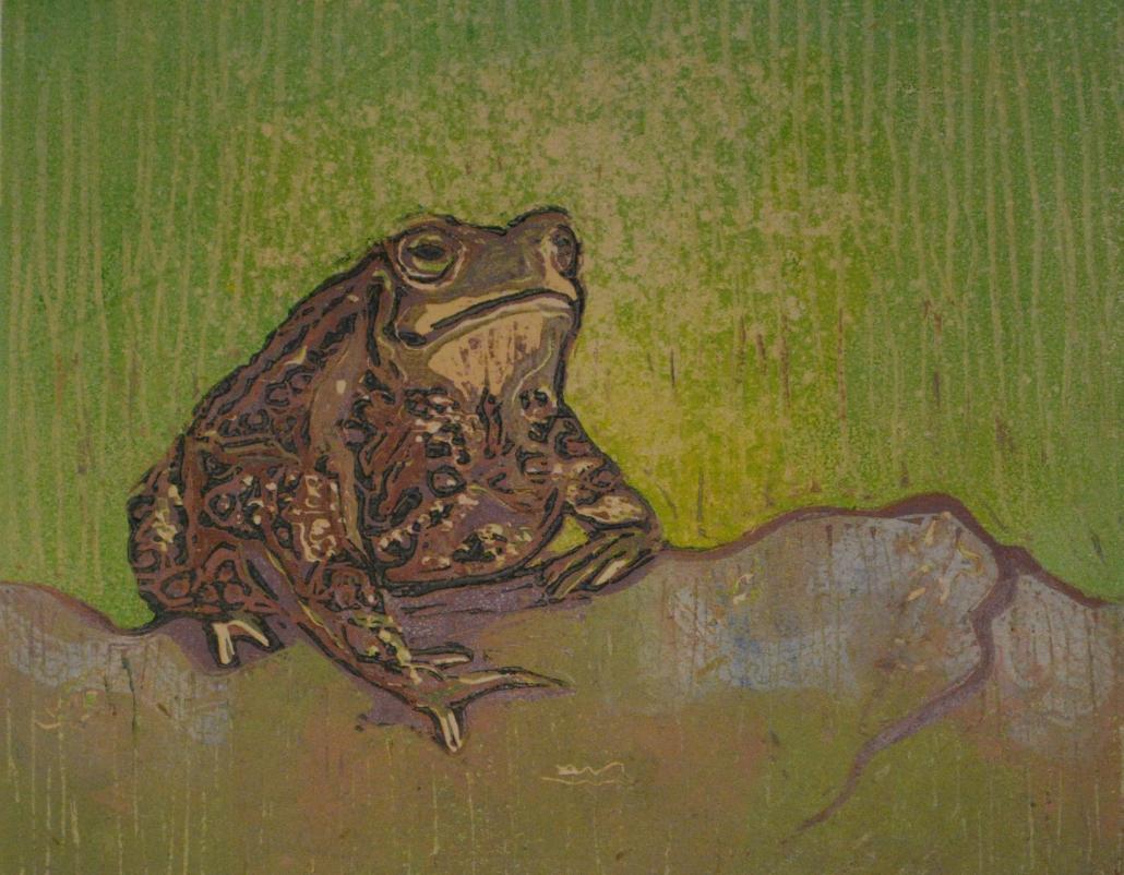 Toad ala Mode/ Terri Brooks